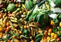 تاثیر زباله های غذایی بر تغییرات اقلیمی