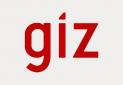 کارشناسان GIZ و توسعه گردشگری پایدار در ایران
