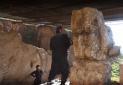 اولاند: آثار باستانی سوریه و عراق را به فرانسه بیاورید