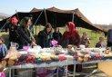 برگزاری جشنواره غذا در منطقه آزاد ارس