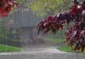 ارتفاع بارندگی در کدام حوضه های آبریزی بیشتر است؟