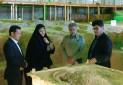 بازدید رئیس سازمان حفاظت محیط زیست از پارک ملی تندوره