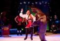 ایران در فهرست کشورهای بدون سیرک حیوانات جهان