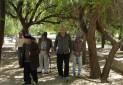 ضرورت ارتقای کیفیت گردشگری سالمندان در جامعه