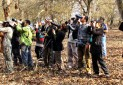 ویژه برنامه های روز جهانی پرندگان مهاجر در ایران برگزار می شود