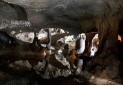 استاندار کردستان: مقدمات ثبت اثر جهانی غار کرفتو فراهم شود