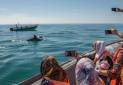 گردشگری دریایی روی امواج توسعه