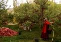 ایران بهشت گردشگری، اکنون نوبت ایران است
