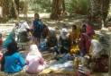 طبیعت گردی و بازی، محور اصلی اردوها!