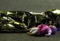 توریسم فرانسه تحت تاثیر حملات تروریستی