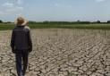 موج خشکسالی به سرسبزترین استان کشور رسید