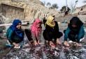 چشمه علی شهرری خشک شد