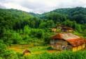 هیچ مجوزی برای برگزاری تور گردشگری در گیلان صادر نشده است