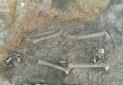 کشف جسد مربوط به 2800 سال پیش در همدان