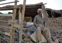 مدیریت زلزله در بناهای تاریخی تنها با مشارکت بین المللی میسر است