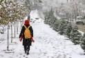 """مشکل آلودگی هوا با اجرای """"طرح تعطیلی یک ماهه مدارس"""" حل نمی شود"""