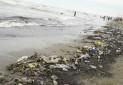 تعهدی برای «غلبه بر آلودگی پلاستیکی»