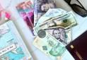 انتقاد نماینده مجلس از یارانه ارزی به سفرهای خارجی
