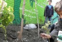 مدرسه طبیعت، فرصتی برای آشنایی کودکان با مهارت های زندگی