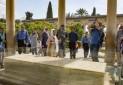 چرا کاهش ارزش ریال گردشگران خارجی ایران را کاهش داد