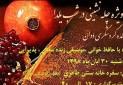 جشن مردمی شب یلدا در دهکده گردشگری دوان کازرون برگزار می شود