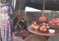 ارغوان بافی، هنر احیاشده در پاوه