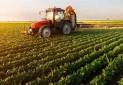 مجوز گردشگری کشاورزی داده می شود