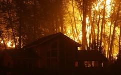 آتش سوزی در جنگل های آمریکا رکورد زد؛ آژانس خدمات جنگلداری به نقطه شکست رسید