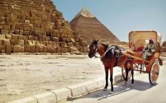 کاهش 4 درصدی سفر به خاورمیانه در 2016