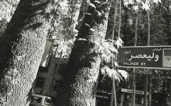 همکاری «میراث فرهنگی» و شهرداری برای حفظ بناهای تاریخی