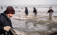 سواحل گیلان، شاهراهی برای رسیدن به توسعه پایدار