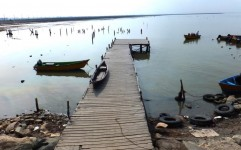 ورود مجلس به ماجرای جزیره آشوراده
