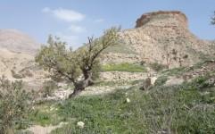 پیشینه سکونت در دهلران به 30 تا 40 هزار سال قبل می رسد