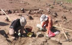 چهاردهمین همایش باستان شناسی ایران برگزار می شود
