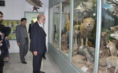 6 موزه در روز جهانی موزه ها افتتاح می شود