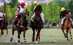 «میراث ورزش» در سال 95 چه برای ایران داشت؟