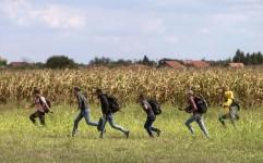 طرح مجلس برای ساماندهی روستاها و کاهش مهاجرت