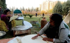 شناسایی 250 خوراک بومی فارس برای جذب گردشگر