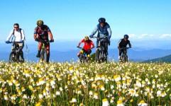 برگزاری اولین دوره راهنمایان دوچرخه سواران