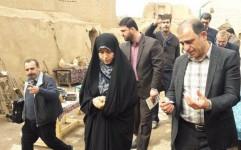 معاون رئیس جمهوری از قلعه تاریخی سریزد بازدید کرد