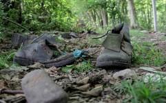 جنگل های مازندران زیر تیغ گردشگری مخرب