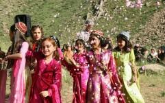 اولین جشن گلاب گیری اورامانات برگزار شد