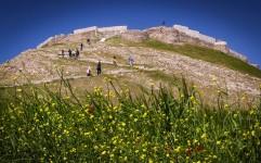 نمایان شدن دوره فرهنگی نوسنگی و مفرغ در تپه گوران