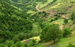 حفاظت از 20 میلیون هکتار عرصه های طبیعی به مردم واگذار شد