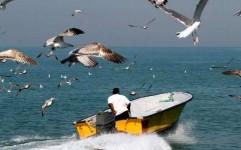 جمع آوری دو هزار رشته دام و تور صید پرندگان در مازندران