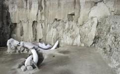 کشف تله 15 هزار ساله برای شکار ماموت ها
