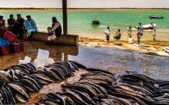 پیشنهاد ایجاد اولین منطقه آزاد گردشگری کشور در سواحل مکران