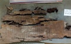 کشف قدیمی ترین کتاب مصور جهان در گورستان مصر باستان