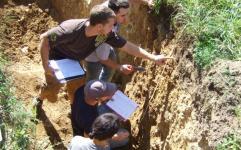 چگونگی تحقق انسجام سازمانی در مدیریت یکپارچه منابع طبیعی