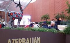 خیز جدید آذربایجان برای تصاحب شاهنامه!